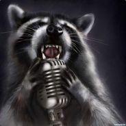Sing Raccoon.jpg